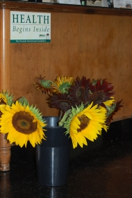 Sunflowers at the Health Center of Hillsborough.
