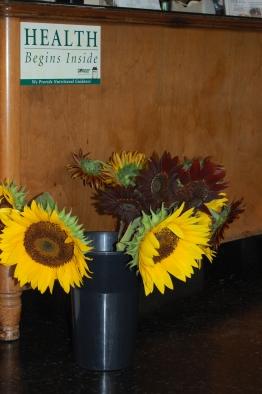 Sunflowers at the Health Center of Hillsborough.