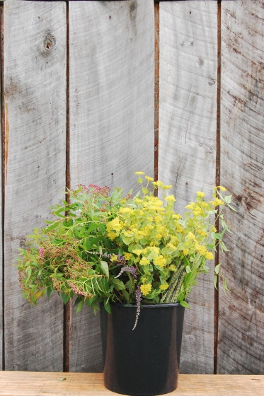 Spring Forth Farm DIY Foliage bucket