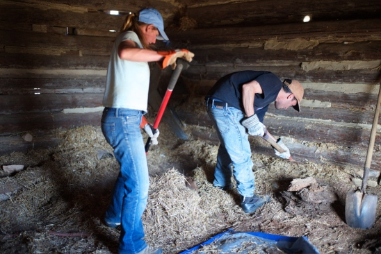 Clearing the barn. (Photo by Thomas Fisher.)