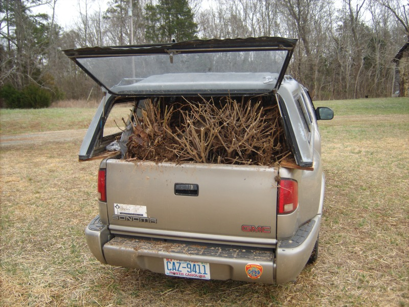 Our truck, overflowing with perennials for planting.