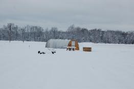 The hoophouse