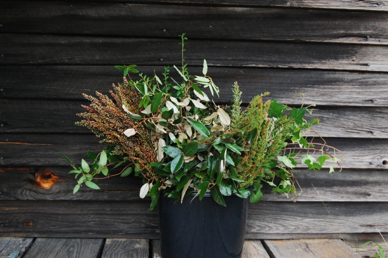 DIY foliage bucket.